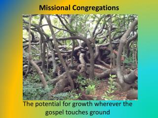 Missional Congregations