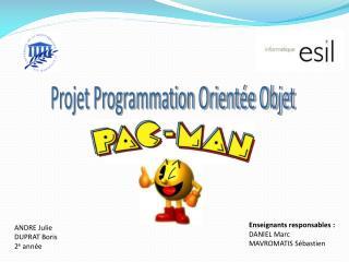 Projet Programmation Orientée Objet
