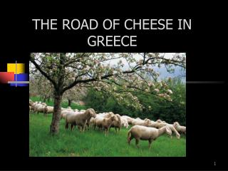 THE ROAD OF CHEESE IN GREECE