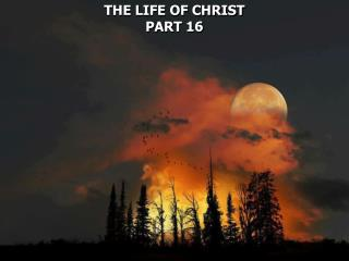 THE LIFE OF CHRIST PART 16
