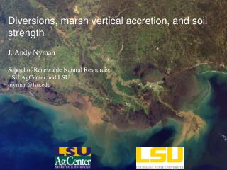 Diversions, marsh vertical accretion, and soil strength J . Andy  Nyman