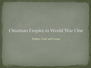 Ottoman Empire in World War One