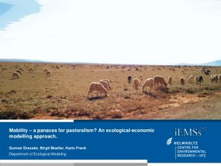 Mobility – a panacea for pastoralism?  An ecological-economic  modelling  approach.