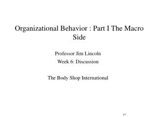Organizational Behavior : Part I The Macro Side