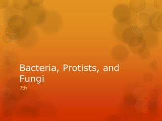 Bacteria,  Protists , and Fungi