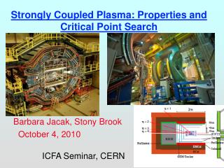 Strongly Coupled Plasma: Properties and Critical Point Search