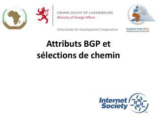 Attributs  BGP et  sélections de  chemin
