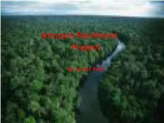 Amazon Rainforest Project By James Reid