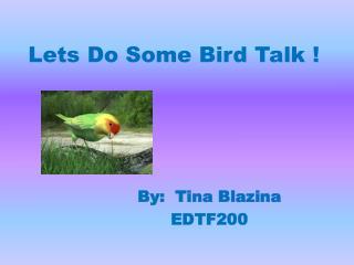 Lets Do Some Bird Talk !