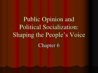 Public Opinion and  Political Socialization:  Shaping the People's Voice