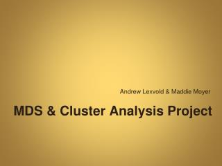 MDS & Cluster Analysis Project