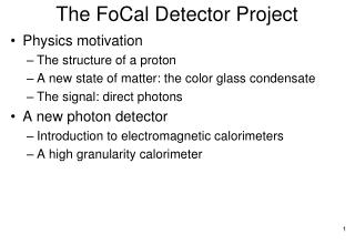 The  FoCal  Detector Project