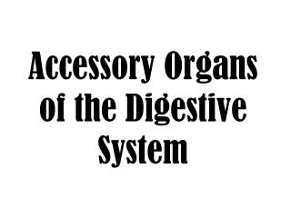 Accessory Organs of the Digestive System