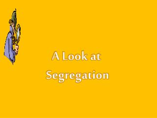 A Look at  Segregation