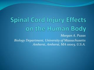 Spinal Cord Injury Effects on the Human  Body