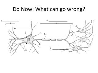 Do Now: What can go wrong?