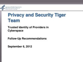 Privacy and Security Tiger Team