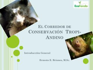 El Corredor de  Conservación   Tropi -Andino