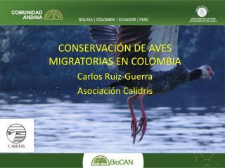 CONSERVACIÓN DE AVES MIGRATORIAS EN COLOMBIA Carlos Ruiz-Guerra Asociación Calidris