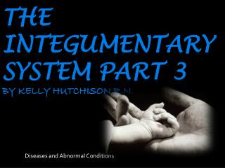 The  integumentary  system Part 3 by Kelly Hutchison R.n.