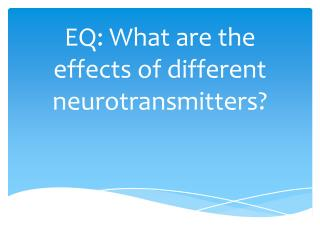 EQ:  What  are the effects of different neurotransmitters?