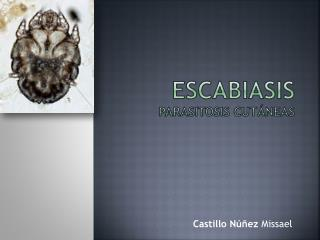 Escabiasis parasitosis cutáneas