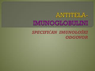 ANTITELA-    IMUNOGLOBULINI