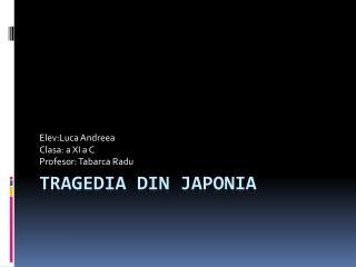 Tragedia  din  Japonia
