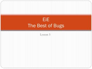 EiE  The Best of Bugs