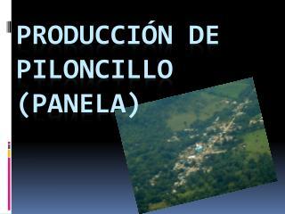 PRODUCCIÓN DE PILONCILLO (PANELA)