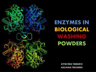 ENZYMES IN  BIOLOGICAL  WASHING  POWDERS