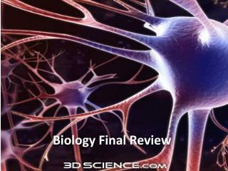 Biology Final Review