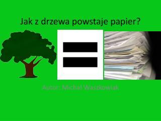 Jak z drzewa powstaje papier?