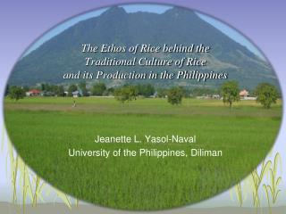 The Ethos of Rice behind the  Traditional Culture of Rice  and its Production in the Philippines