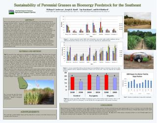 Sustainability of Perennial Grasses as Bioenergy Feedstock for the Southeast