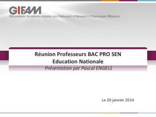 Réunion Professeurs BAC PRO SEN  Education  Nationale Présentation par Pascal ENGELS