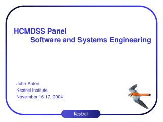 HCMDSS Panel  Software and Systems Engineering