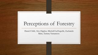 Perceptions of Forestry