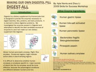 Making our own  digestol  pill digest-all