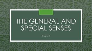 The General and Special Senses
