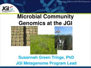 Microbial Community Genomics at the JGI