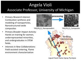 Angela  Violi Associate Professor, University of Michigan