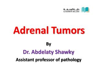 Adrenal Tumors
