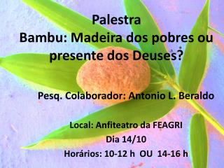 Palestra Bambu: Madeira dos pobres ou presente dos Deuses?