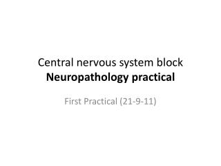 Central nervous system block           Neuropathology practical