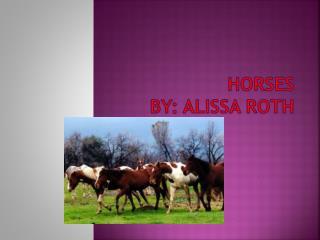 Horses By: Alissa Roth
