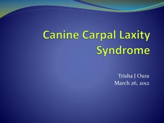 Canine Carpal Laxity Syndrome