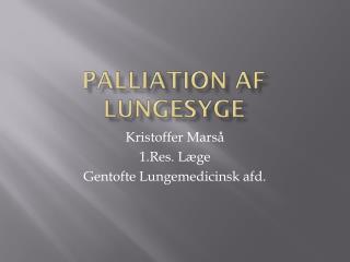 Palliation  af Lungesyge