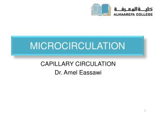 MICROCIRCULATION