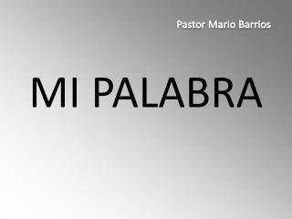MI PALABRA